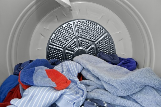 killing bed bugs in your dryer
