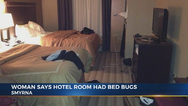 bed bugs in hotel room