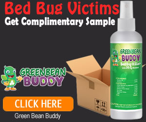 natural bed bug killer