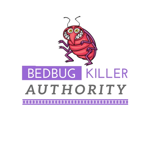 diy bed bugs