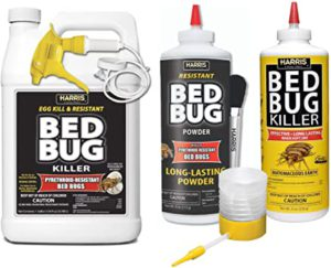diy bed bug solutions