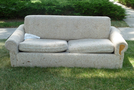 couches and bed bugs